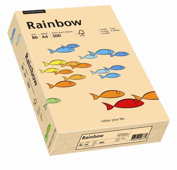 Rainbow lachs (S40) - 160 g/qm - DIN A4
