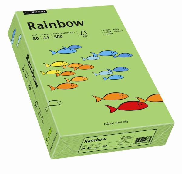 Rainbow grün (S76) - 80 g/qm - DIN A4
